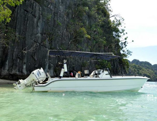 Coron Speed Boat Tours